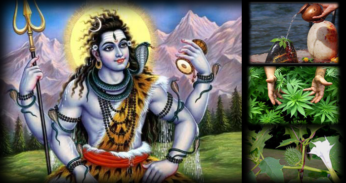 महाशिवरात्रि स्पेशल : भगवान शिव के पूजन में इन 4 चीजों का करें प्रयोग, भोलेनाथ की कृपा से चमक उठेंगी आपकी किस्मत,शिव पूजा के उपाय